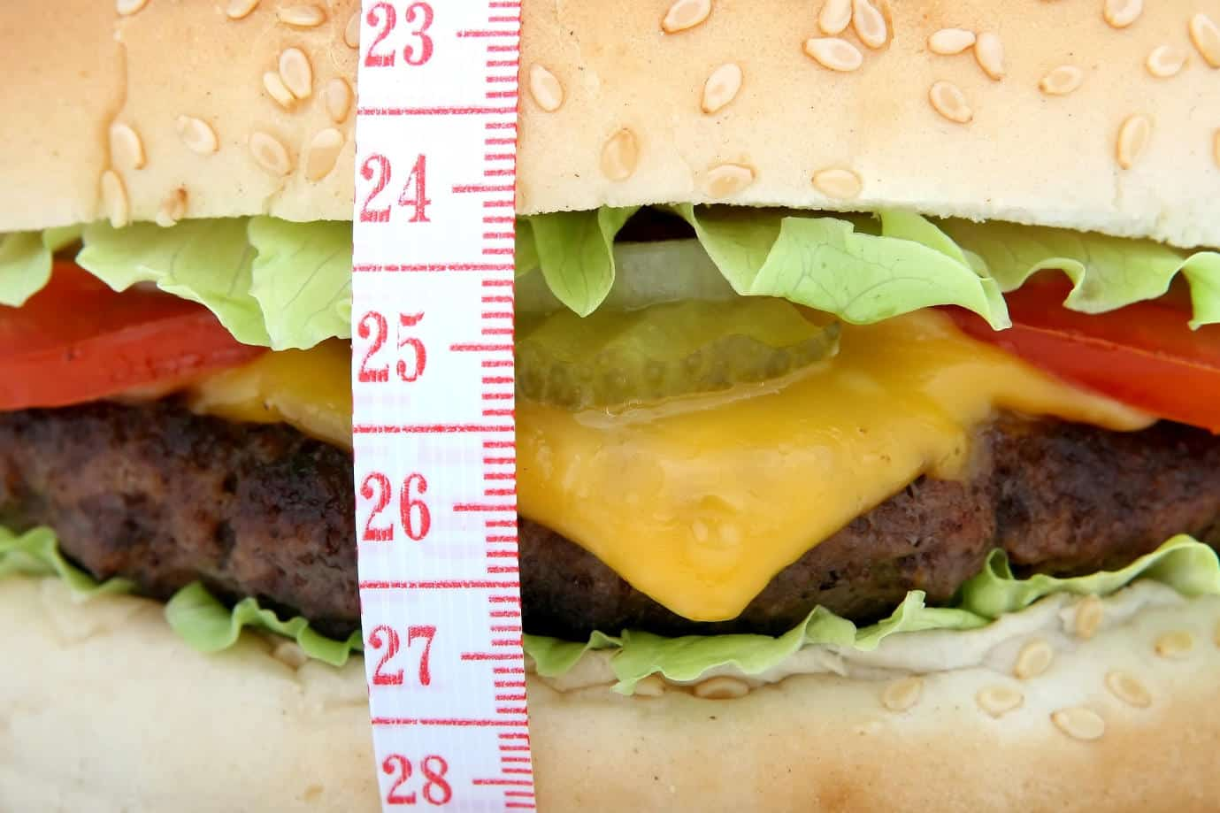 Global obesity rates expected to soar in next decade